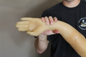 Rubber Arm Demo
